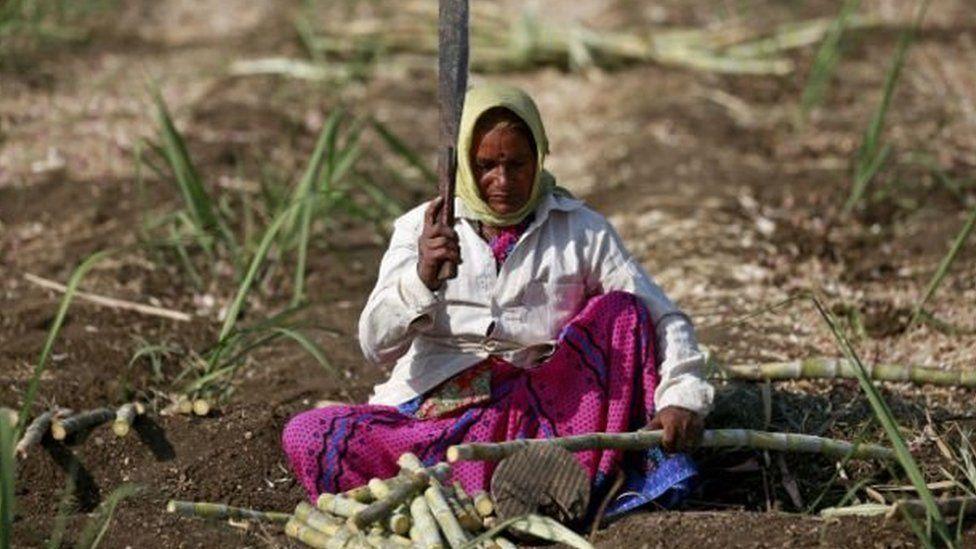 Maharashtra की ये महिलाएं अपना गर्भाशय क्यों निकलवा रही हैं ?