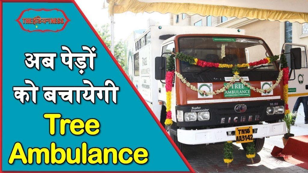 Tree Ambulance