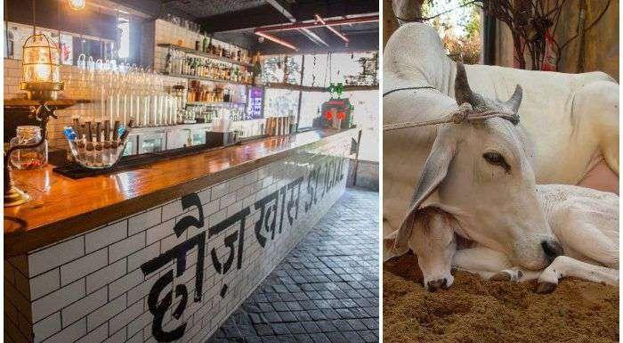 Hauz Khas Village : एक तबेले वाला गांव कैसे बन गया दिल्ली का सबसे बड़ा पार्टी हब ?