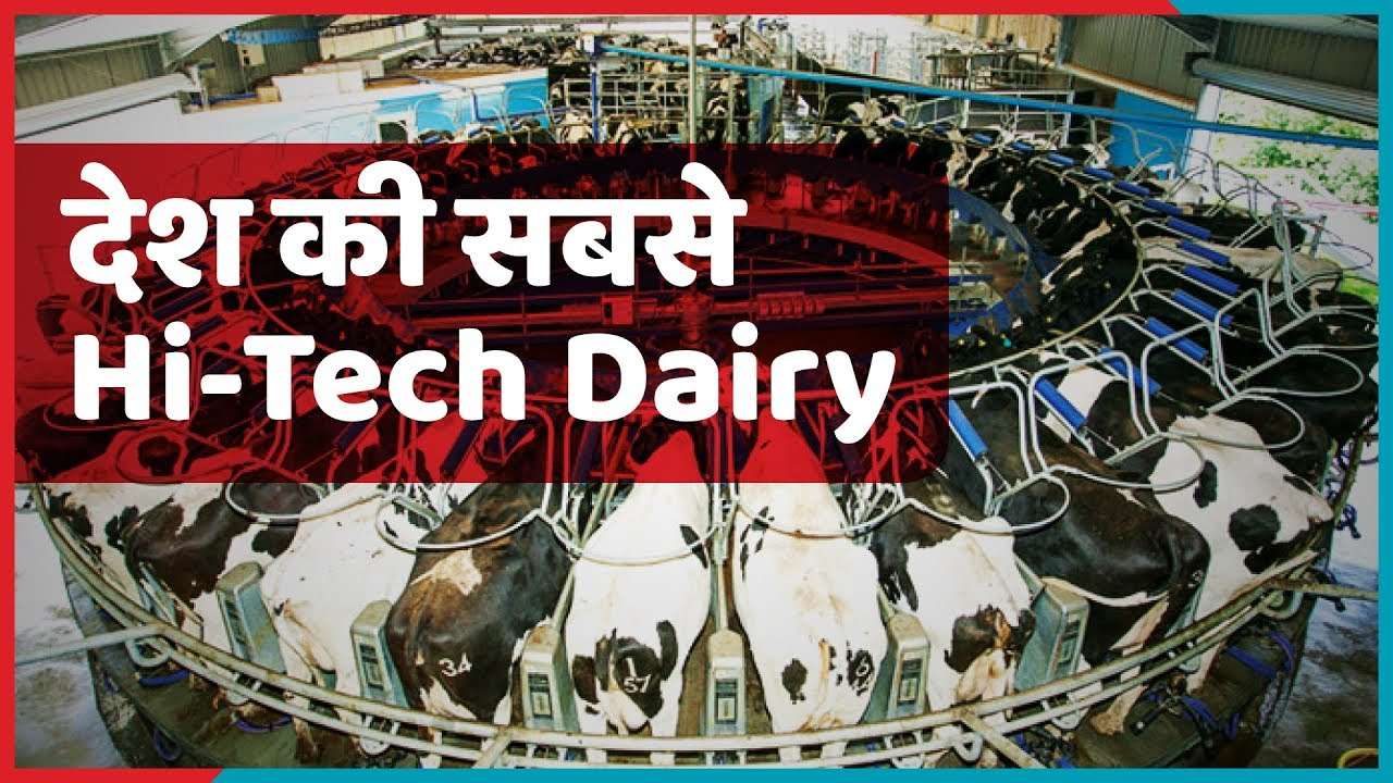 Bhagya laxmi Dairy – अंबानी से लेकर अमिताभ बच्चन तक पीते हैं इस डेयरी का दूध