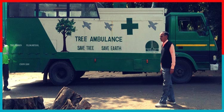 Tree Ambulance,Plantation