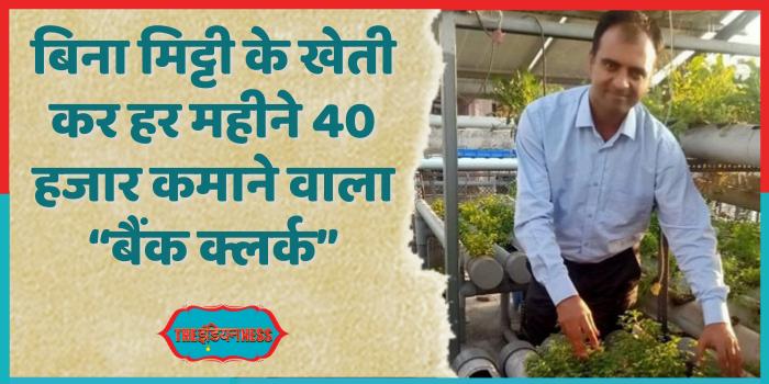 हाइड्रोपोनिक खेती से हर महीने 40 हजार कमाते हैं अंकित गुप्ता
