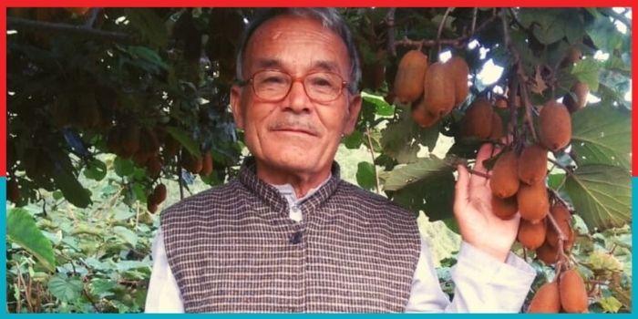 रिटायर हेडमास्टर ने बनाई कीवी की खेती से पहचान, कमाई 10 लाख से ज्यादा